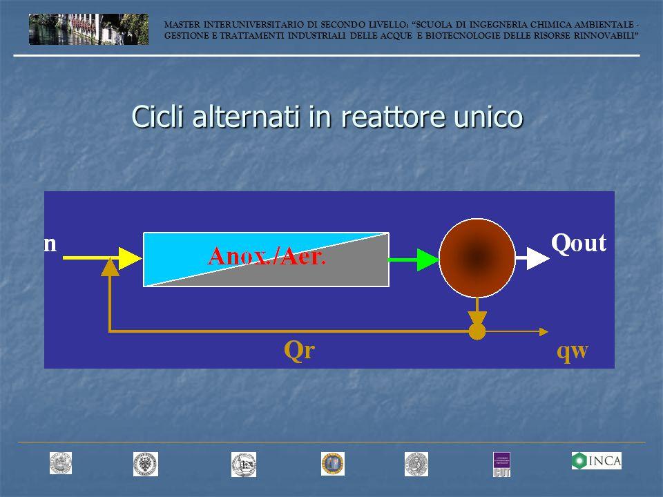 Cicli alternati in reattore unico MASTER INTERUNIVERSITARIO DI SECONDO LIVELLO: SCUOLA DI INGEGNERIA CHIMICA AMBIENTALE - GESTIONE E TRATTAMENTI INDUSTRIALI DELLE ACQUE E BIOTECNOLOGIE DELLE RISORSE RINNOVABILI