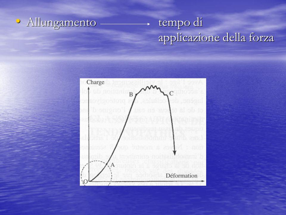 Allungamentotempo di applicazione della forza Allungamentotempo di applicazione della forza