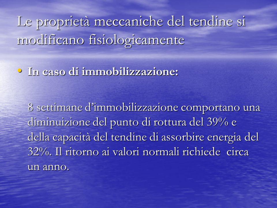 Le proprietà meccaniche del tendine si modificano fisiologicamente In caso di immobilizzazione: In caso di immobilizzazione: 8 settimane d'immobilizza