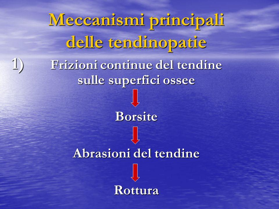 Meccanismi principali delle tendinopatie Frizioni continue del tendine sulle superfici ossee Borsite Abrasioni del tendine Rottura 1) 1)