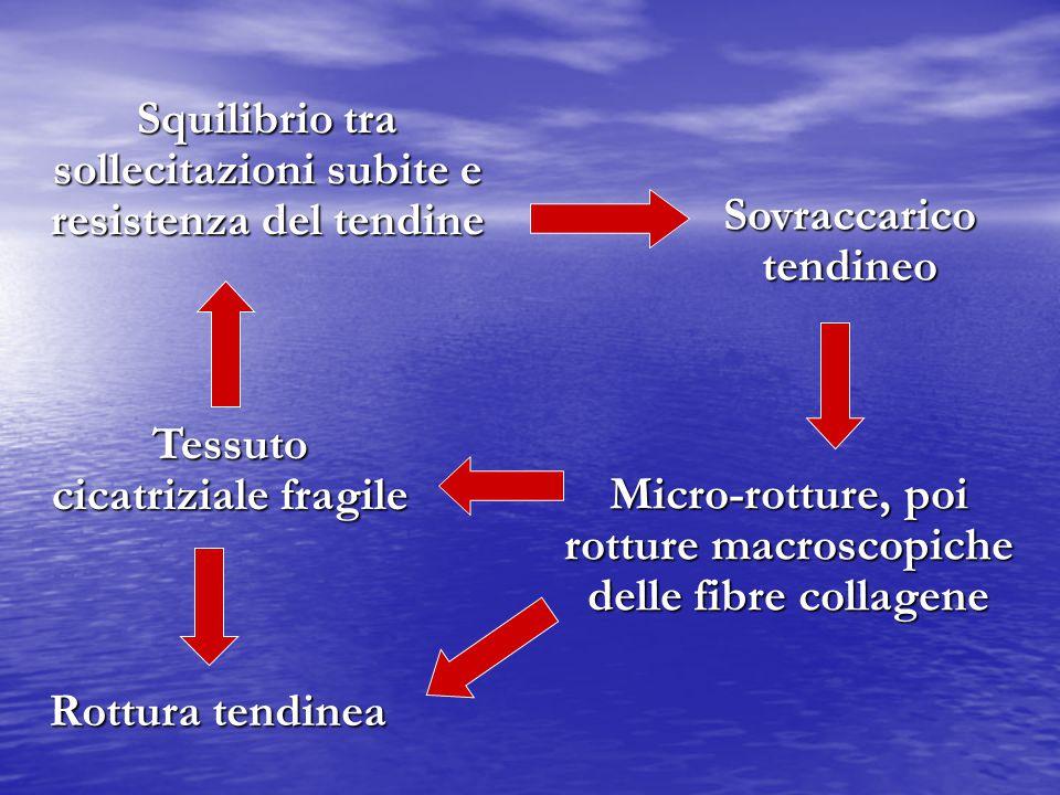 Squilibrio tra sollecitazioni subite e resistenza del tendine Sovraccarico tendineo Micro-rotture, poi rotture macroscopiche delle fibre collagene Tes