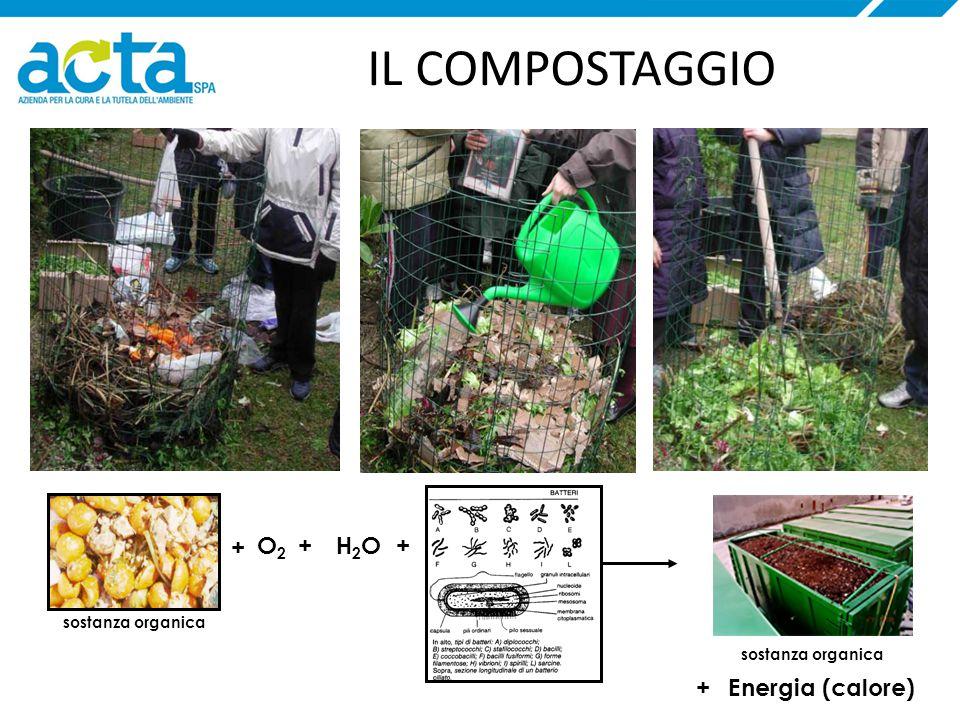 IL COMPOSTAGGIO Energia (calore)+ O2O2 + ++ sostanza organica H2OH2O