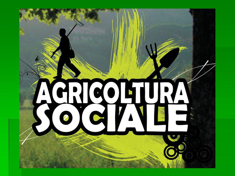 L'agricoltura sociale  Coniuga l'aspetto multifunzionale delle attività agricole alla produzione di ben- essere per la comunità locale e ad azioni di rilevanza sociale nei confronti di persone in condizione di disagio
