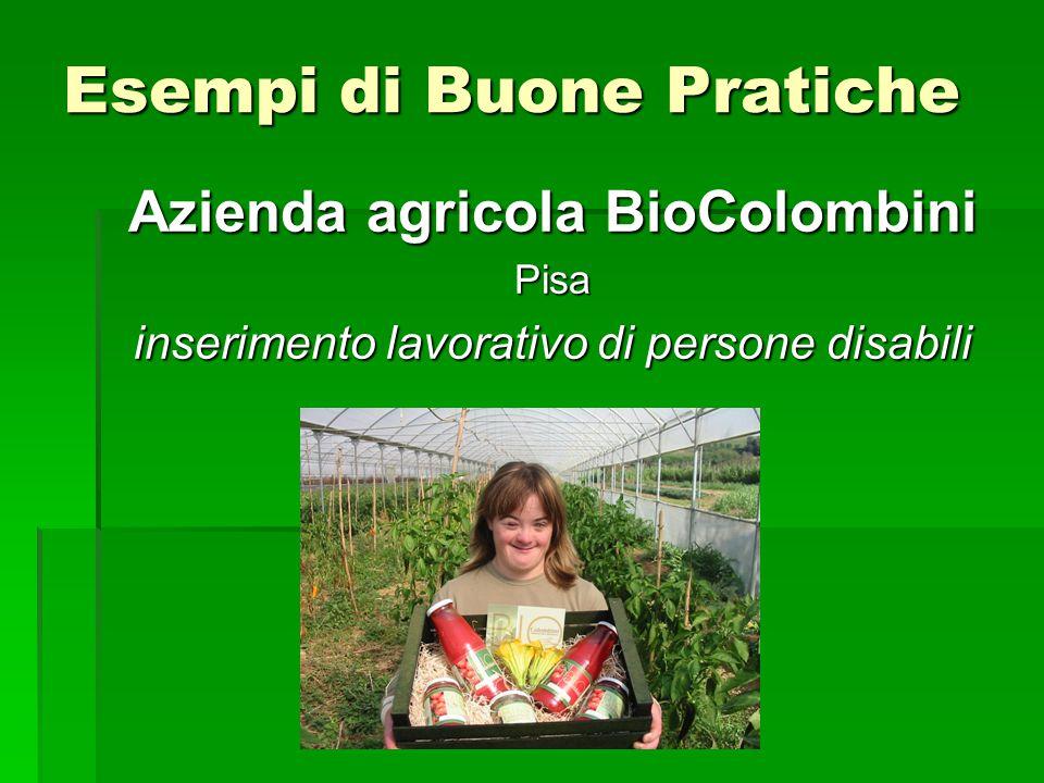 Esempi di Buone Pratiche Azienda agricola BioColombini Pisa inserimento lavorativo di persone disabili