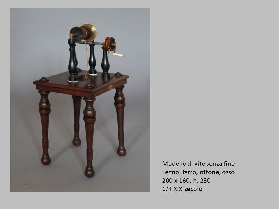 Modello di vite senza fine Legno, ferro, ottone, osso 200 x 160, h. 230 1/4 XIX secolo
