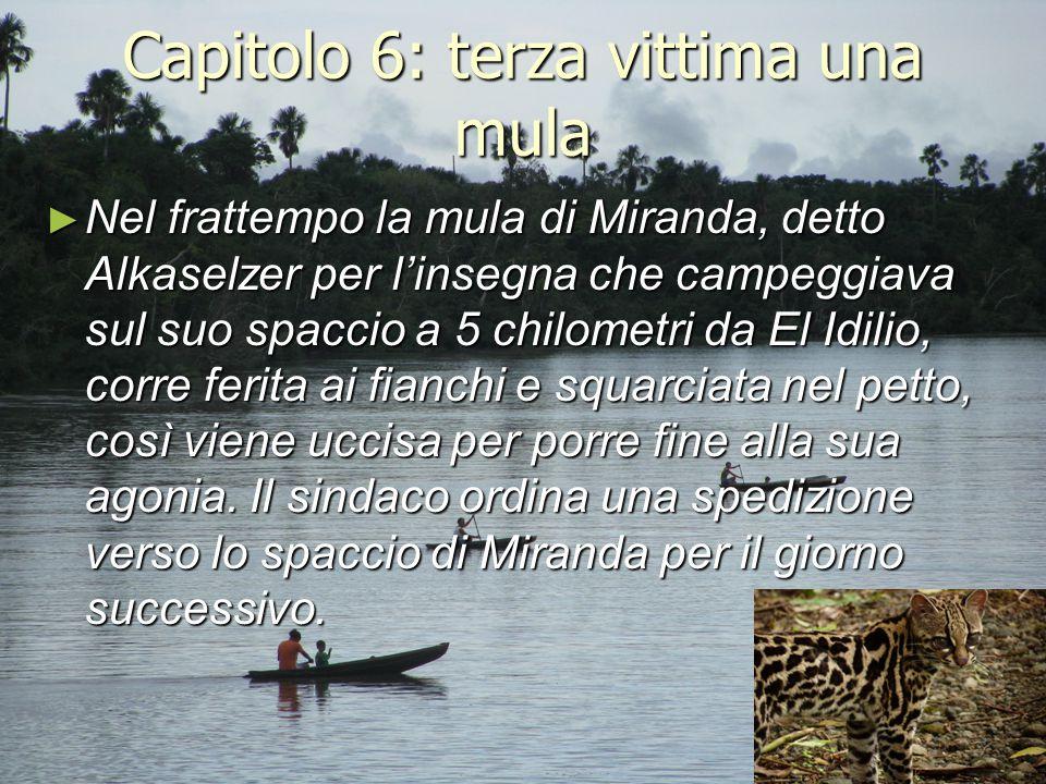 Capitolo 6: terza vittima una mula ► Nel frattempo la mula di Miranda, detto Alkaselzer per l'insegna che campeggiava sul suo spaccio a 5 chilometri d