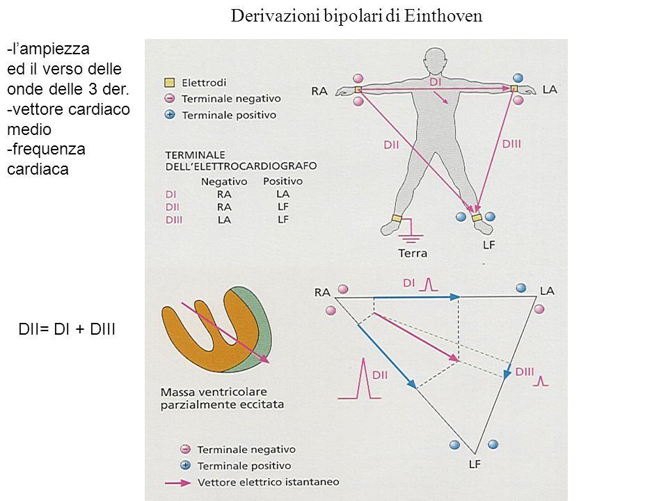Derivazioni bipolari di Einthoven -l'ampiezza ed il verso delle onde delle 3 der. -vettore cardiaco medio -frequenza cardiaca DII= DI + DIII