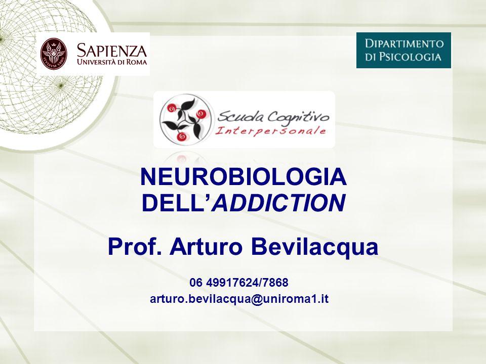 06 49917624/7868 arturo.bevilacqua@uniroma1.it NEUROBIOLOGIA DELL'ADDICTION Prof. Arturo Bevilacqua
