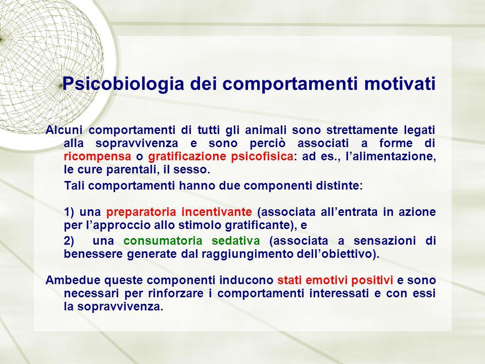 Psicobiologia dei comportamenti motivati Alcuni comportamenti di tutti gli animali sono strettamente legati alla sopravvivenza e sono perciò associati