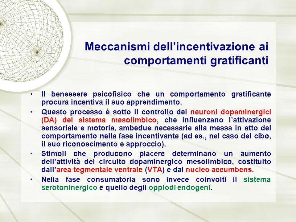 Meccanismi dell'incentivazione ai comportamenti gratificanti Il benessere psicofisico che un comportamento gratificante procura incentiva il suo appre