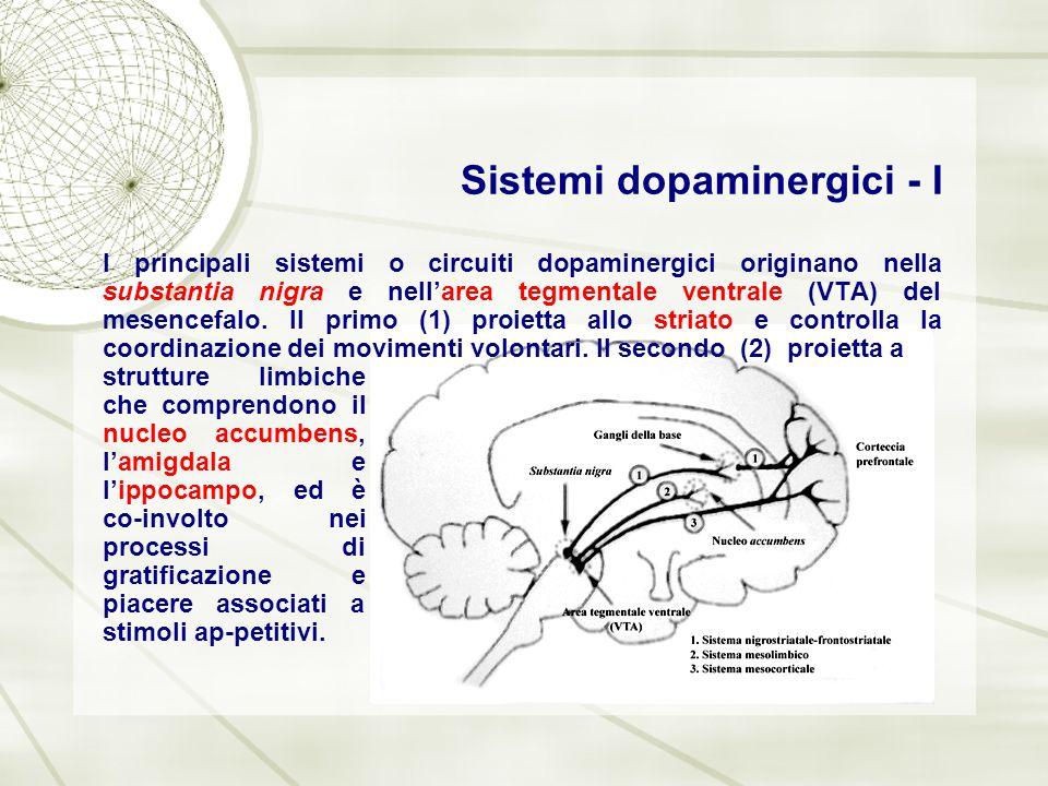 Sistemi dopaminergici - I I principali sistemi o circuiti dopaminergici originano nella substantia nigra e nell'area tegmentale ventrale (VTA) del mes