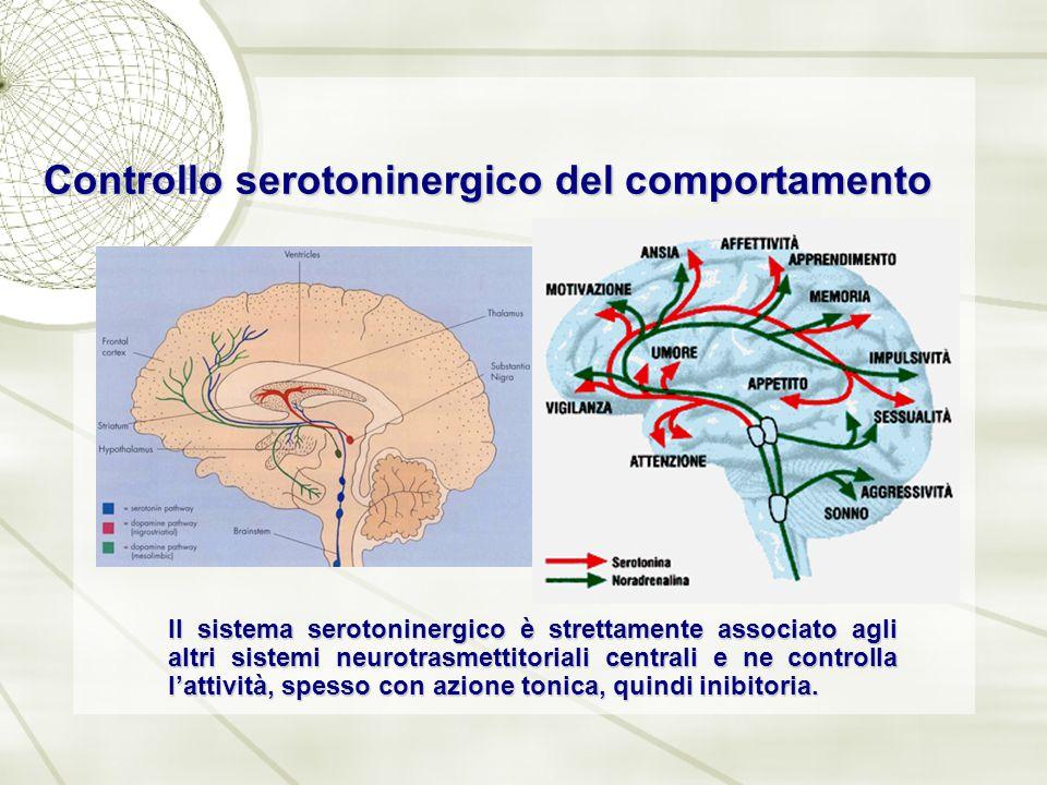 Controllo serotoninergico del comportamento Il sistema serotoninergico è strettamente associato agli altri sistemi neurotrasmettitoriali centrali e ne