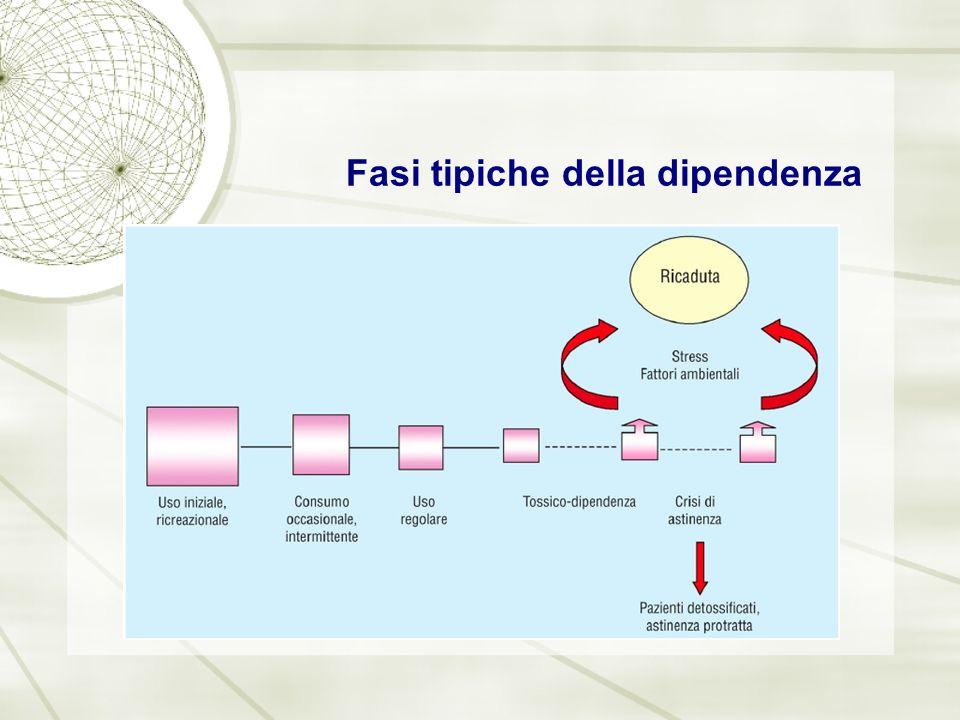 Sistemi dopaminergici - II Un terzo sistema (3) proietta dalla VTA alla corteccia frontale ed ha funzioni quali la memoria a breve termine e la pianificazione dei movimenti.