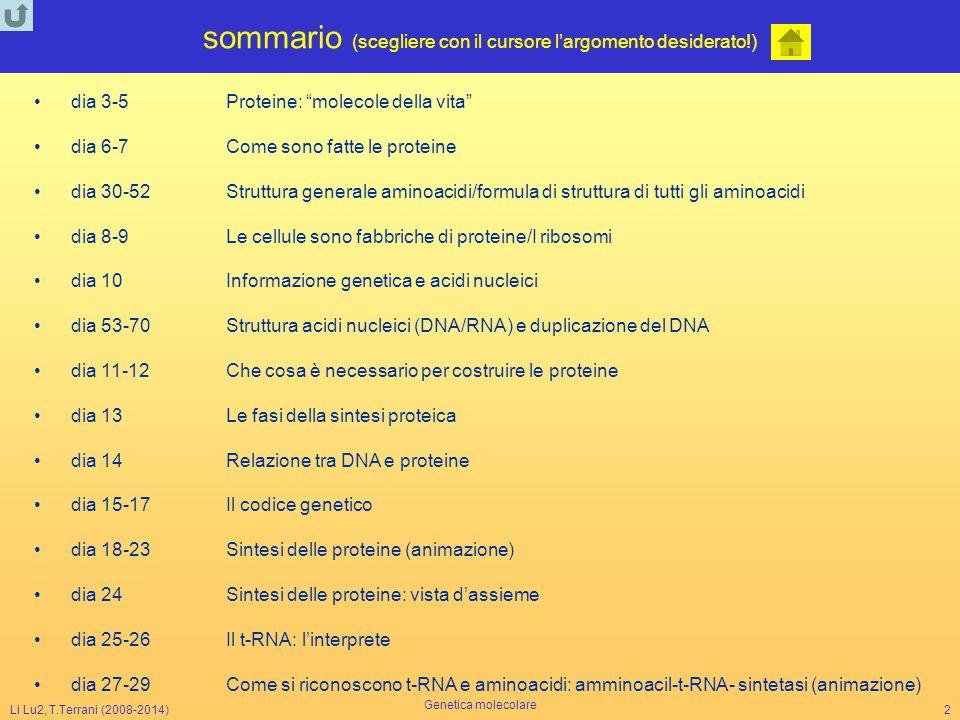 Li Lu2, T.Terrani (2008-2014) Genetica molecolare 23 Thr U G A La sintesi delle proteine T A C A C G T C G A G G C C T G T A A T G T G C A G C T C C G G A C A T Cys Ser 5' U C G His ' G U A Met DNA 5' 3' 5' inizio filamento codificante codice A U G U G C A G C U C C G G A C A U 3' 5' Leu G A G Ser 5' A G G Gly 5' C C U His 5' G U A NH 2