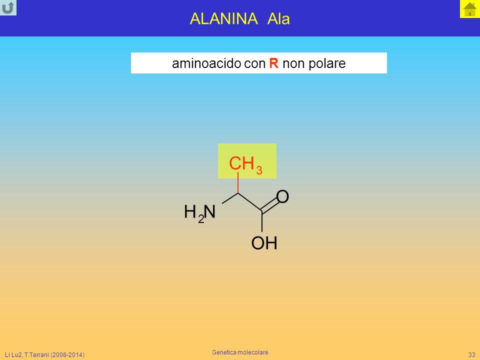 Li Lu2, T.Terrani (2008-2014) Genetica molecolare 33 ALANINA Ala NH 2 O CH 3 OH aminoacido con R non polare