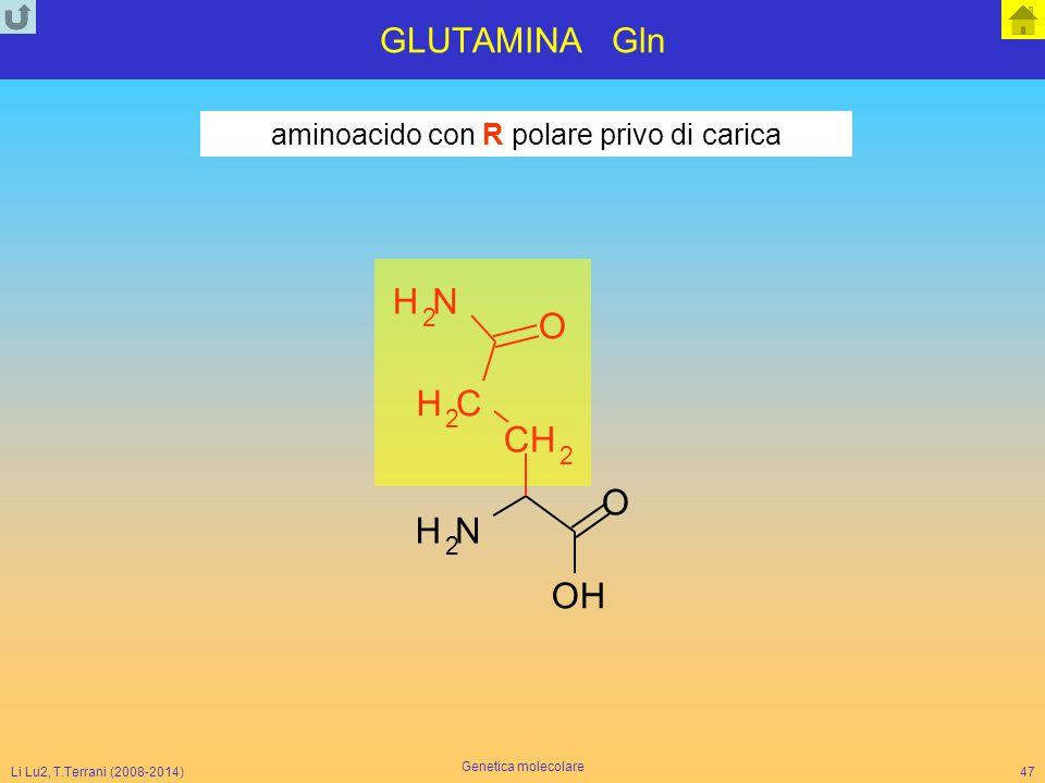 Li Lu2, T.Terrani (2008-2014) Genetica molecolare 47 GLUTAMINA Gln NH 2 O CH 2 CH 2 O NH 2 OH aminoacido con R polare privo di carica