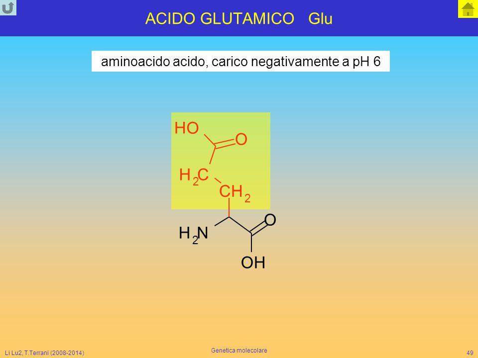 Li Lu2, T.Terrani (2008-2014) Genetica molecolare 49 ACIDO GLUTAMICO Glu NH 2 O CH 2 CH 2 O O H OH aminoacido acido, carico negativamente a pH 6