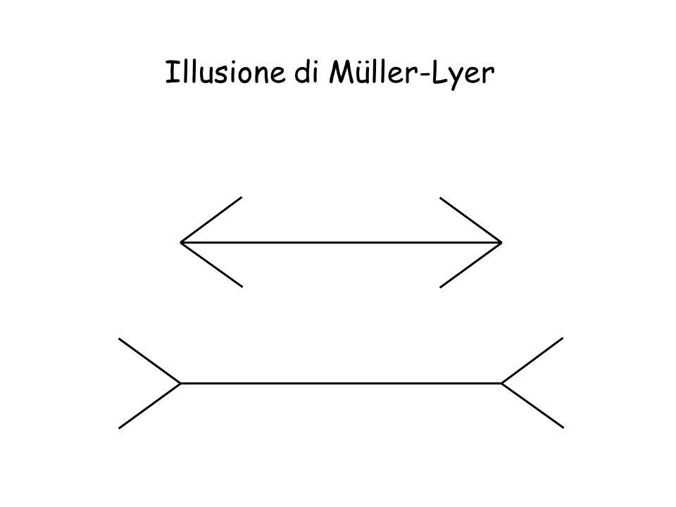 Illusione di Müller-Lyer