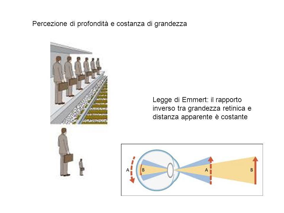 Percezione di profondità e costanza di grandezza Legge di Emmert: il rapporto inverso tra grandezza retinica e distanza apparente è costante