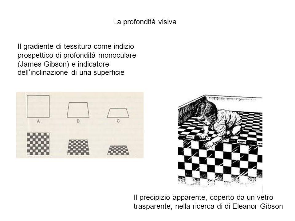 Il gradiente di tessitura come indizio prospettico di profondità monoculare (James Gibson) e indicatore dell'inclinazione di una superficie Il precipizio apparente, coperto da un vetro trasparente, nella ricerca di di Eleanor Gibson La profondità visiva