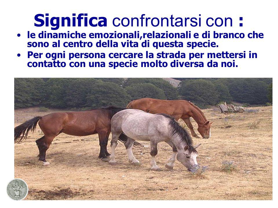 Significa confrontarsi con : le dinamiche emozionali,relazionali e di branco che sono al centro della vita di questa specie.