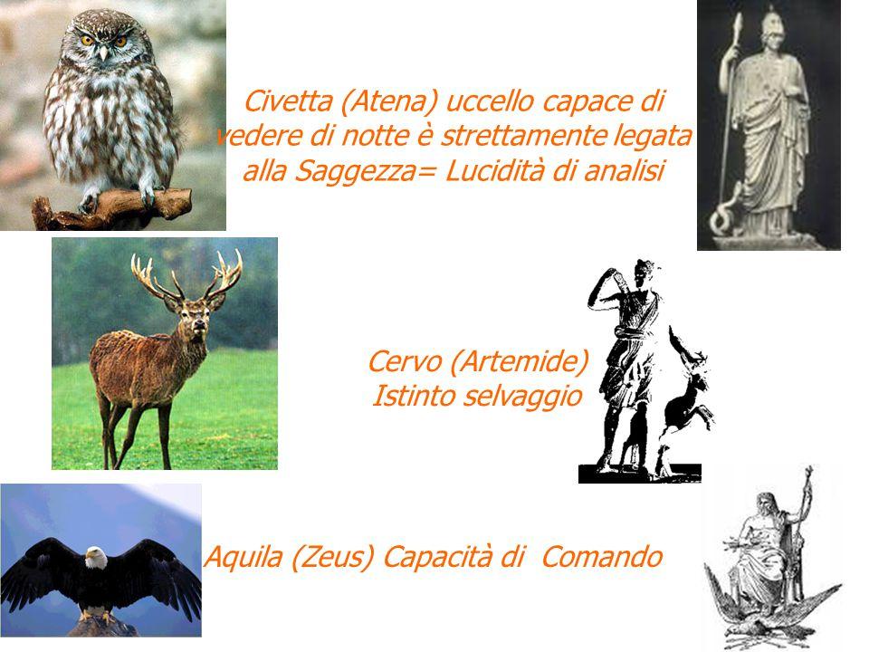 Civetta (Atena) uccello capace di vedere di notte è strettamente legata alla Saggezza= Lucidità di analisi Cervo (Artemide) Istinto selvaggio Aquila (Zeus) Capacità di Comando