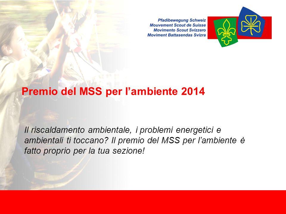 Premio del MSS per l'ambiente 2014 Il riscaldamento ambientale, i problemi energetici e ambientali ti toccano.