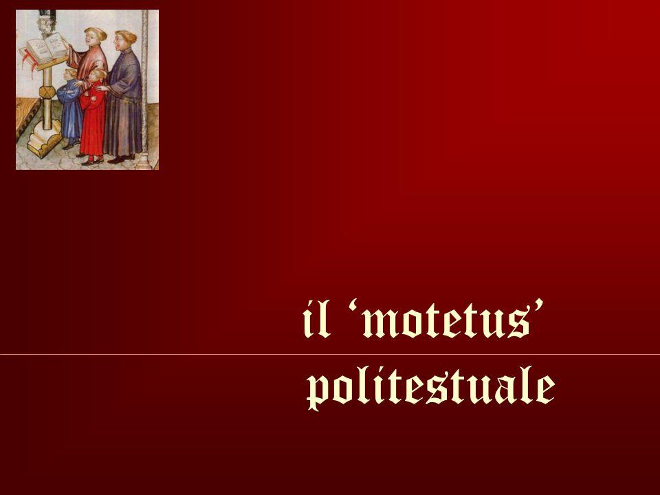 Flos filius eius.