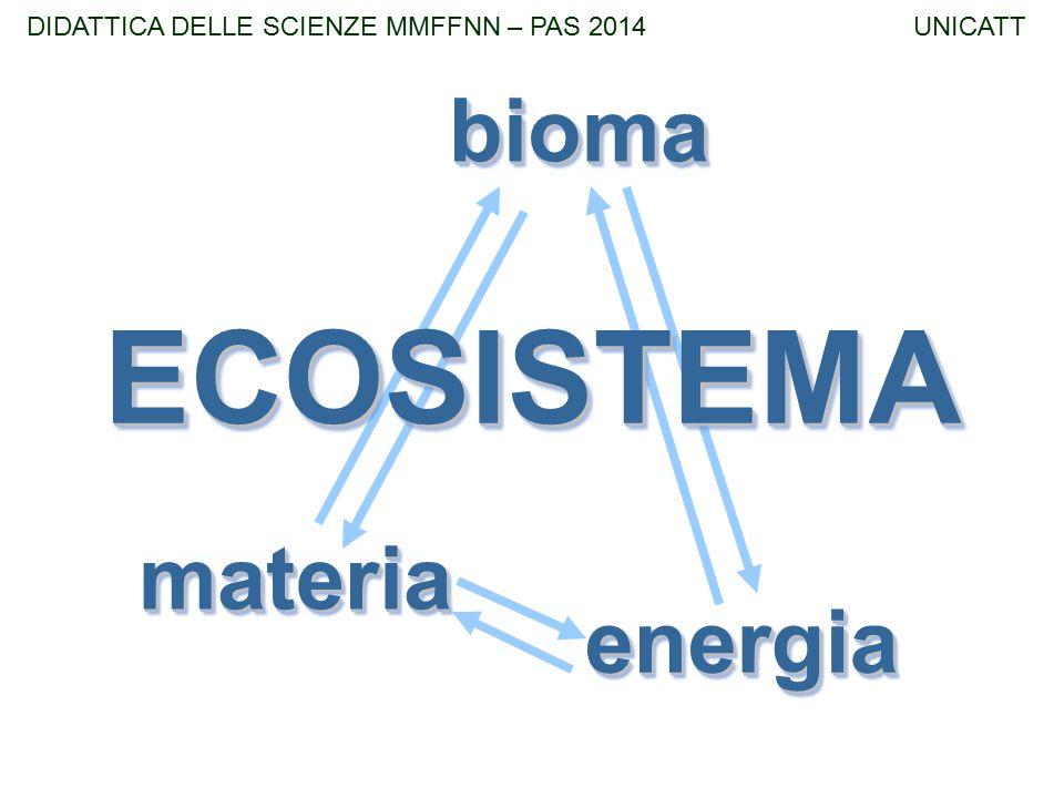 materiamateria energiaenergia biomabioma ECOSISTEMAECOSISTEMA DIDATTICA DELLE SCIENZE MMFFNN – PAS 2014 UNICATT