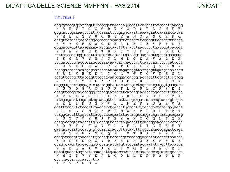 TFA – DIDATTICA DELLE SCIENZE UNICATTDIDATTICA DELLE SCIENZE MMFFNN – PAS 2014 UNICATT