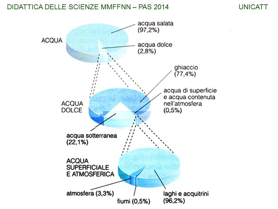 BIOMA: Eucarioti ANIMALI DIDATTICA DELLE SCIENZE MMFFNN – PAS 2014 UNICATT