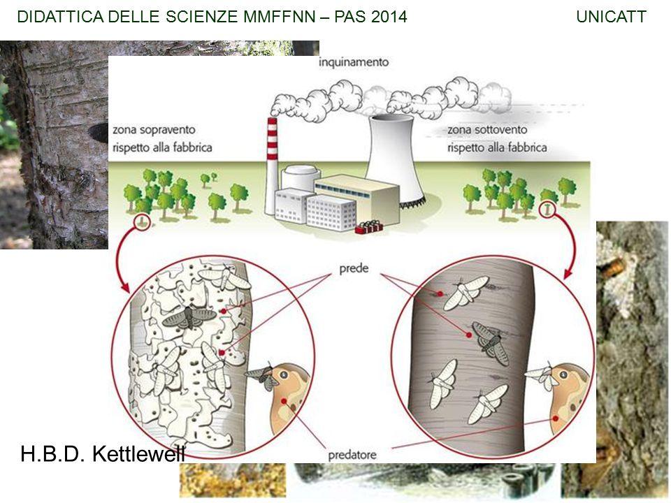 H.B.D. Kettlewell DIDATTICA DELLE SCIENZE MMFFNN – PAS 2014 UNICATT
