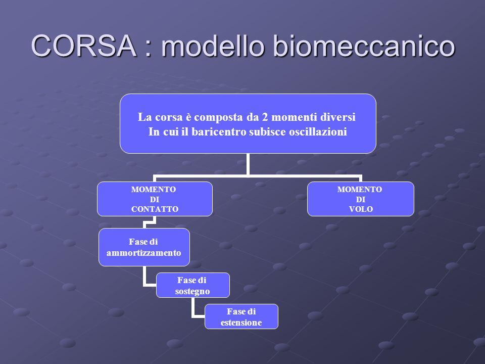 CORSA : modello biomeccanico La corsa è composta da 2 momenti diversi In cui il baricentro subisce oscillazioni MOMENTO DI CONTATTO Fase di ammortizzamento Fase di sostegno Fase di estensione MOMENTO DI VOLO