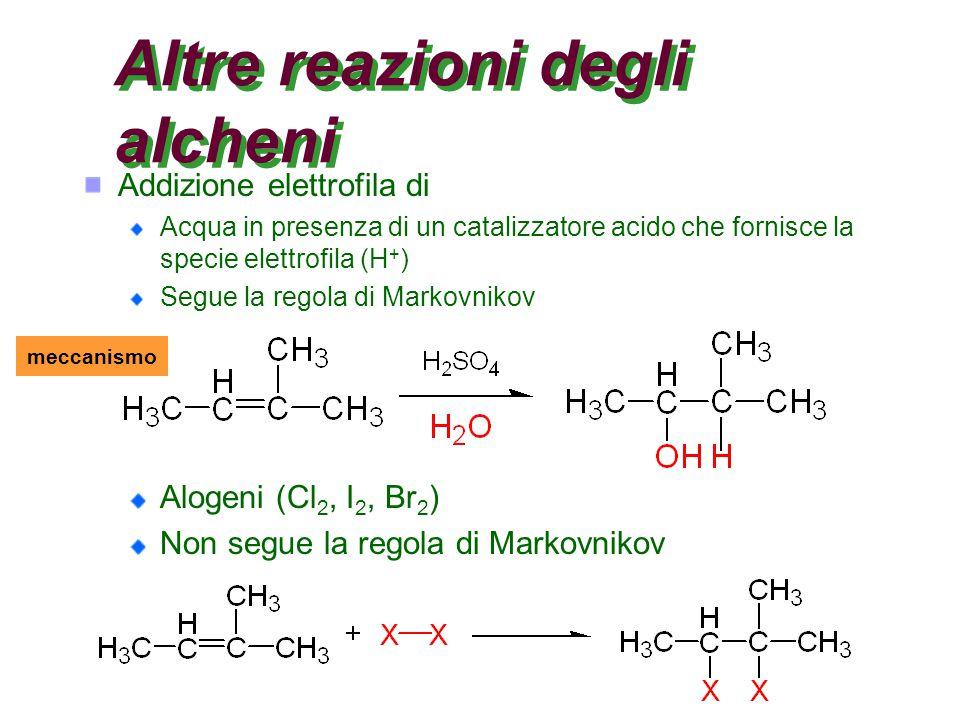 Altre reazioni degli alcheni Addizione elettrofila di Acqua in presenza di un catalizzatore acido che fornisce la specie elettrofila (H + ) Segue la regola di Markovnikov Alogeni (Cl 2, I 2, Br 2 ) Non segue la regola di Markovnikov meccanismo