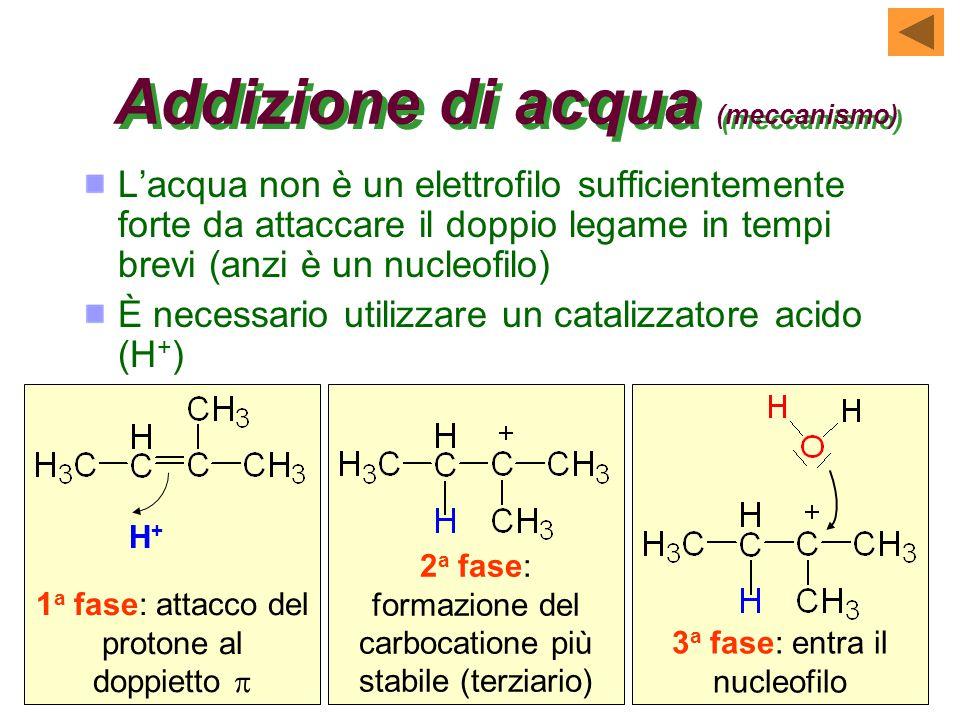 1 a fase: attacco del protone al doppietto  Addizione di acqua (meccanismo) L'acqua non è un elettrofilo sufficientemente forte da attaccare il doppio legame in tempi brevi (anzi è un nucleofilo) È necessario utilizzare un catalizzatore acido (H + ) H+H+ 2 a fase: formazione del carbocatione più stabile (terziario) 3 a fase: entra il nucleofilo