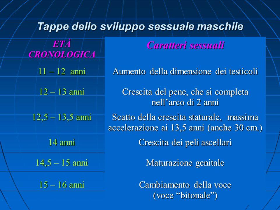 7 Tappe dello sviluppo sessuale maschile ETÀCRONOLOGICA Caratteri sessuali 11 – 12 anni Aumento della dimensione dei testicoli 12 – 13 anni Crescita del pene, che si completa nell'arco di 2 anni 12,5 – 13,5 anni Scatto della crescita staturale, massima accelerazione ai 13,5 anni (anche 30 cm.) 14 anni Crescita dei peli ascellari 14,5 – 15 anni Maturazione genitale 15 – 16 anni Cambiamento della voce (voce bitonale )