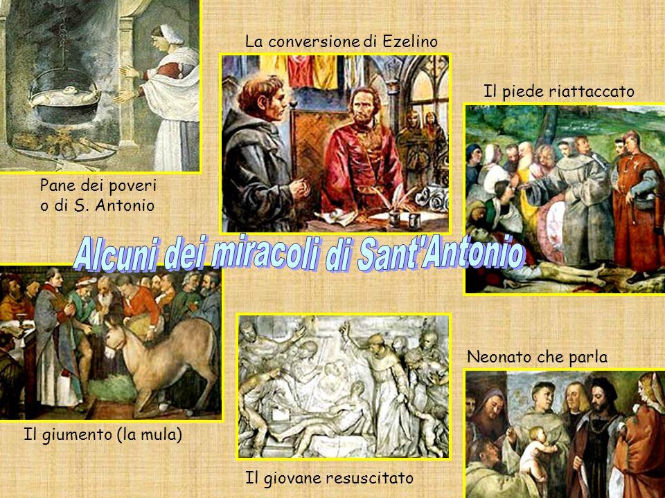 Il giovane resuscitato Neonato che parla La conversione di Ezelino Il piede riattaccato Il giumento (la mula) Pane dei poveri o di S.