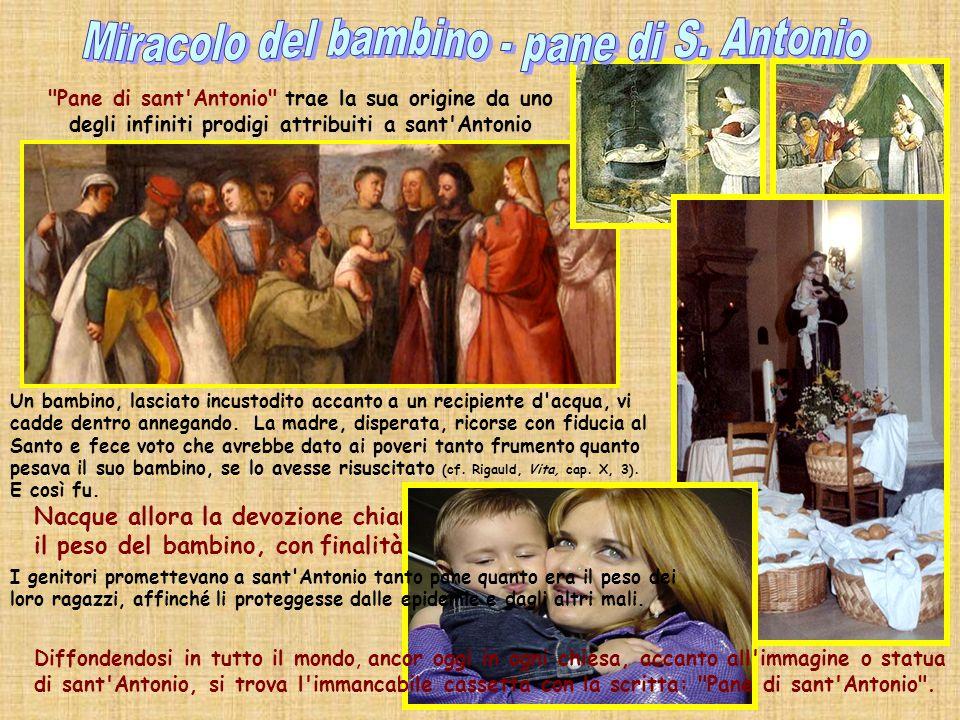 Il giovane resuscitato Neonato che parla La conversione di Ezelino Il piede riattaccato Il giumento (la mula) Pane dei poveri o di S. Antonio