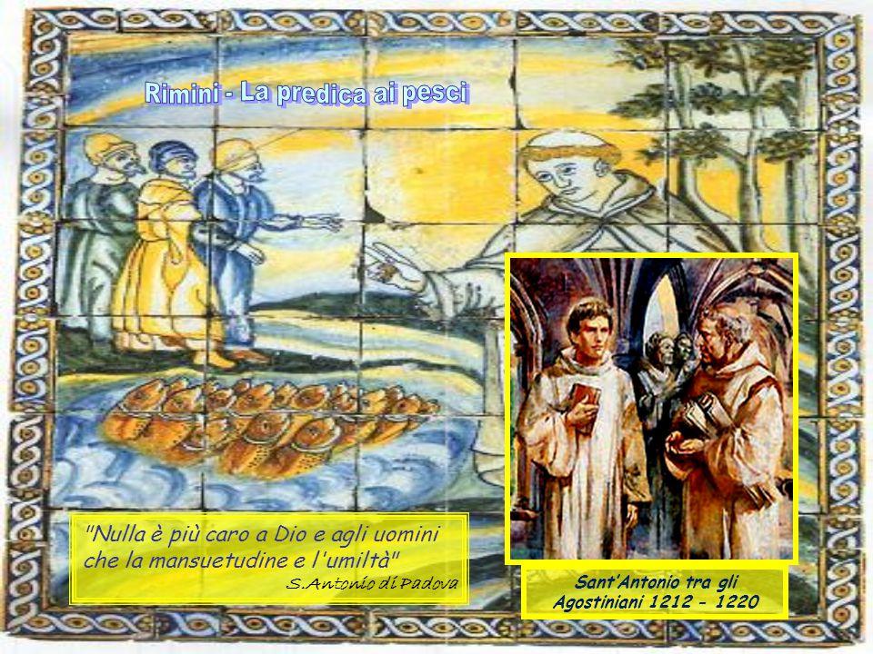 Nulla è più caro a Dio e agli uomini che la mansuetudine e l umiltà S.Antonio di Padova Sant'Antonio tra gli Agostiniani 1212 - 1220