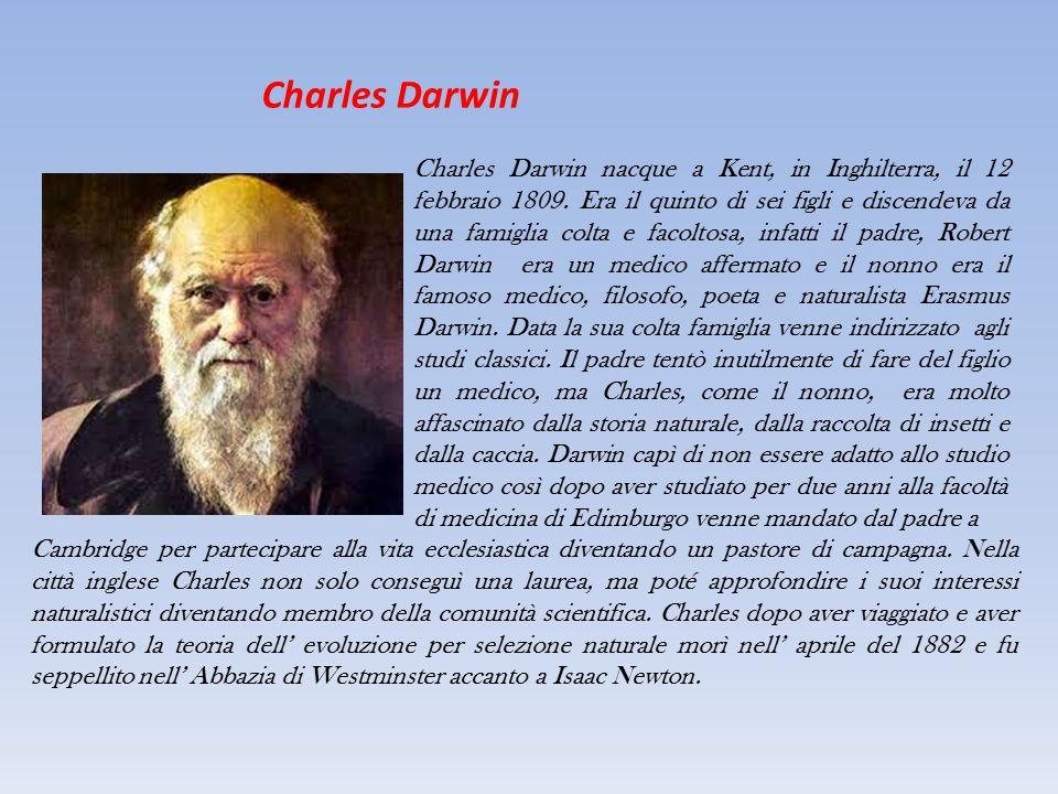 Charles Darwin Charles Darwin nacque a Kent, in Inghilterra, il 12 febbraio 1809. Era il quinto di sei figli e discendeva da una famiglia colta e faco