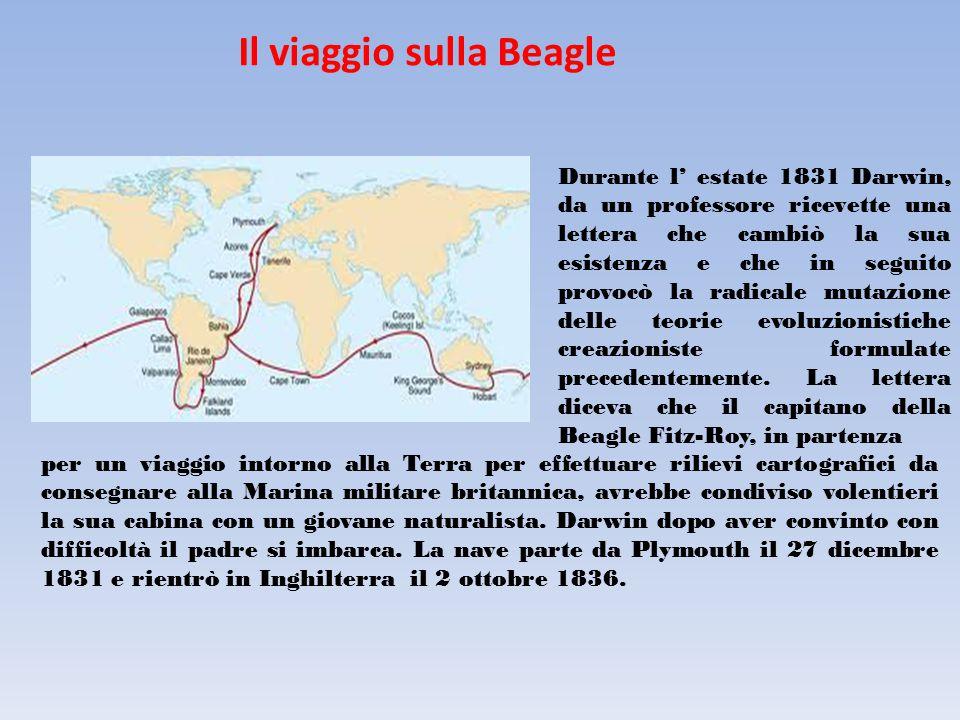 Il viaggio sulla Beagle Durante l' estate 1831 Darwin, da un professore ricevette una lettera che cambiò la sua esistenza e che in seguito provocò la