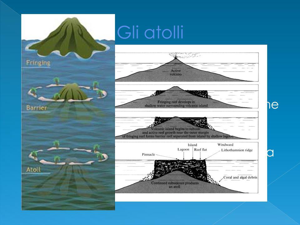  Bisogna calarsi nel clima dell'epoca  Darwin parte come geologo pertanto non sorprende che molte descrizioni che riporta siano di carattere geologico  Dal viaggio riporta osservazioni che lo porteranno a sviluppare una teoria sulla formazione degli atolli corallini ancora oggi accettata