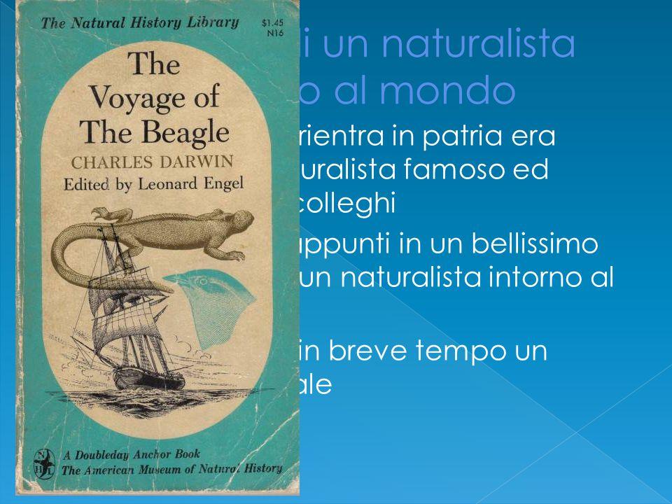  Quando Darwin rientra in patria era diventato un naturalista famoso ed apprezzato dai colleghi  Trasforma i suoi appunti in un bellissimo libro Viaggio di un naturalista intorno al mondo  Questo divenne in breve tempo un successo editoriale