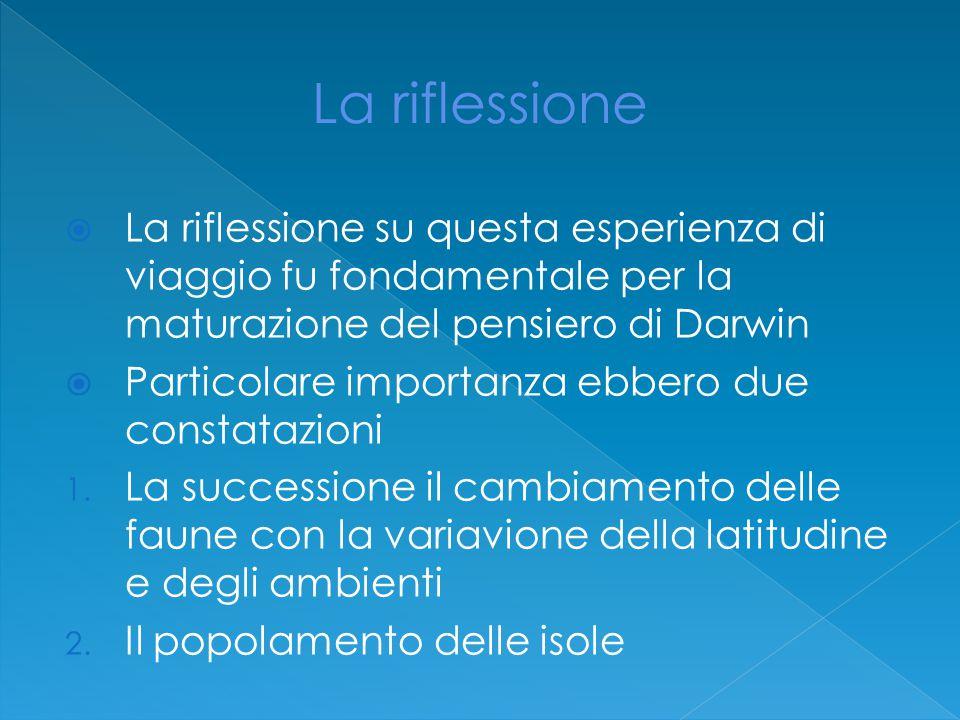  La riflessione su questa esperienza di viaggio fu fondamentale per la maturazione del pensiero di Darwin  Particolare importanza ebbero due constatazioni 1.
