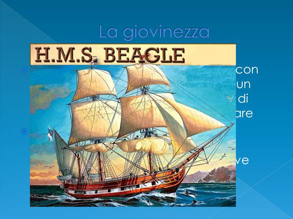  Seguì corsi di medicina e teologia con risultati poco esaltanti tuttavia era un eccellente raccoglitore e studioso di scienze naturali e insetti in particolare  Poco dopo la laurea gli si offri di partecipare come gentiluomo di compagnia del capitano della nave Beagle