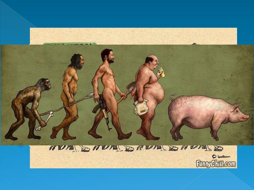  Col tempo le caratteristiche vantaggiose diventano predominanti all'interno della popolazione  Questa teoria prese il nome di teoria dell'evoluzione per selezione naturale  Le variazioni adatte all'ambiente si diffondono  Quelle dannose vengono eliminate