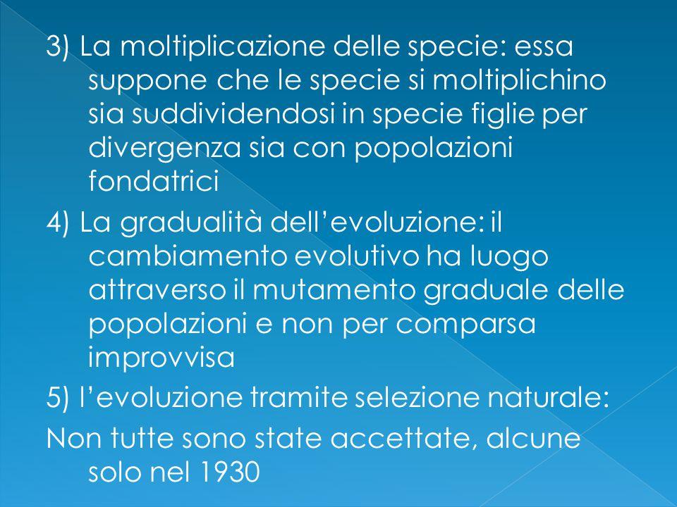 3) La moltiplicazione delle specie: essa suppone che le specie si moltiplichino sia suddividendosi in specie figlie per divergenza sia con popolazioni fondatrici 4) La gradualità dell'evoluzione: il cambiamento evolutivo ha luogo attraverso il mutamento graduale delle popolazioni e non per comparsa improvvisa 5) l'evoluzione tramite selezione naturale: Non tutte sono state accettate, alcune solo nel 1930