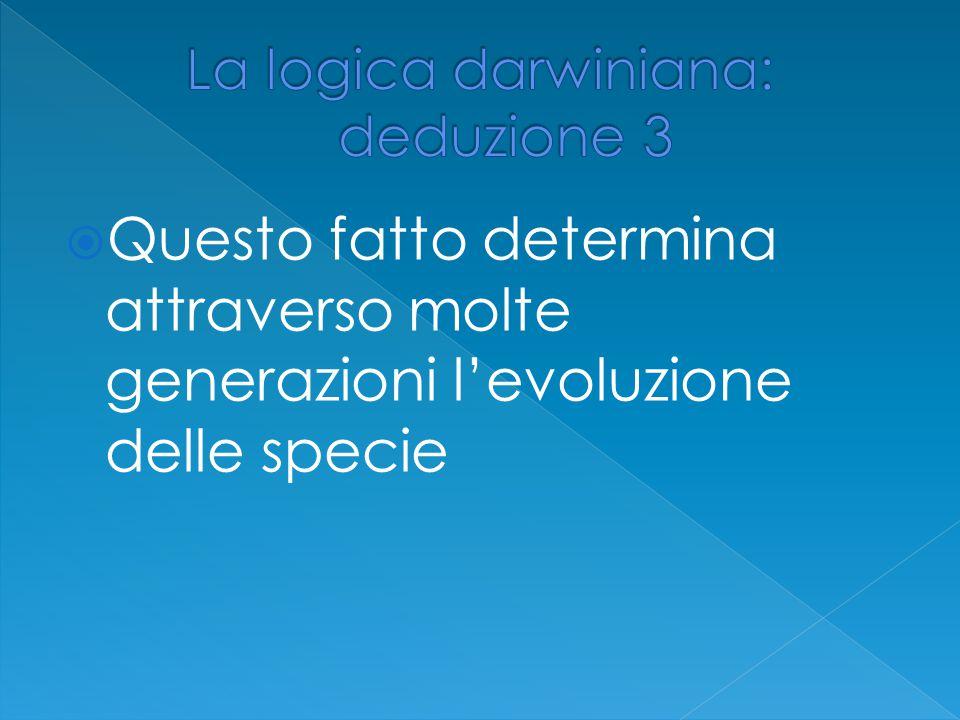 QQuesto fatto determina attraverso molte generazioni l'evoluzione delle specie