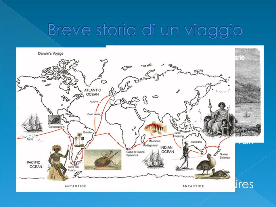  Il 27/12/1831 la Beagle parte per un lungo viaggio il cui scopo lo studio geografico delle coste de Sudametrica  Tocca le isole Canarie e le isole di Capoverde e approdò in Brasile  Inizia a collezionare esemplari di animali e piante  Esplora la foresta tropicale e il Sudamerica via terra fino a Buenos Aires Tenerife Canarie
