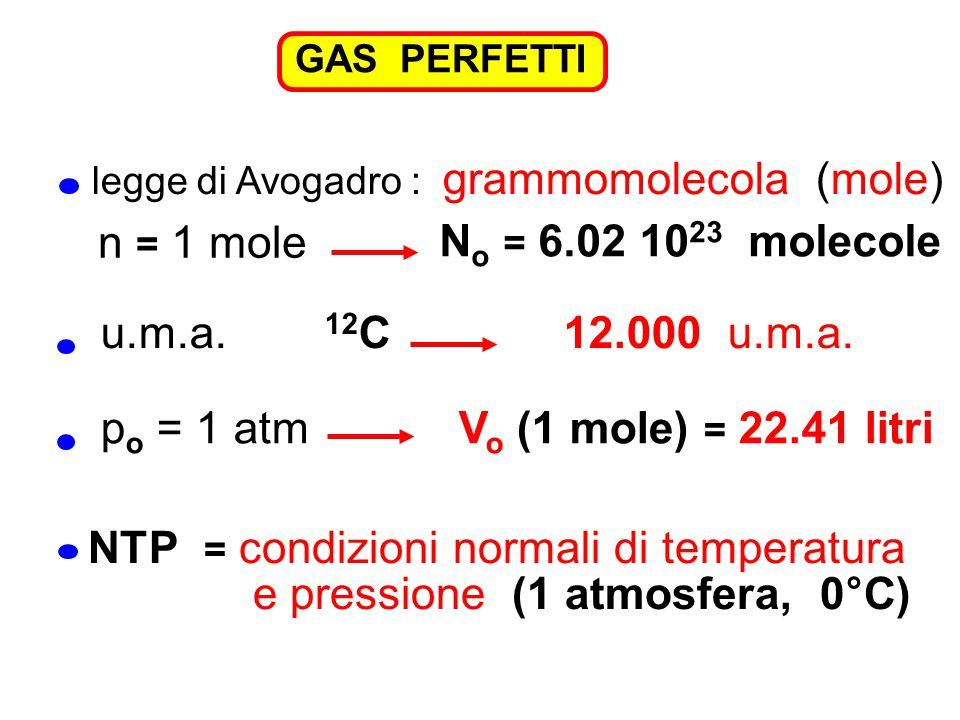 GAS PERFETTI legge di Avogadro : grammomolecola (mole) N o = 6.02 10 23 molecole n = 1 mole u.m.a. 12 C 12.000 u.m.a. p o = 1 atm V o (1 mole) = 22.41